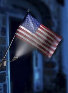 Solar Powered Flag Light