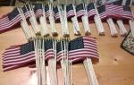 500 flags USA46HFESpear25PK